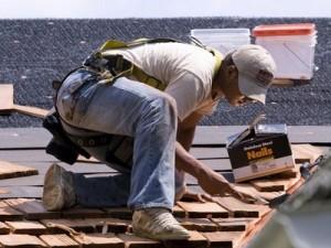 asphalt roofing expert